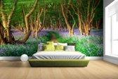 Een bos met gekleurde bloemen Fotobehang 380x265