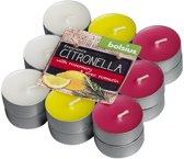 Bolsius - Theelichtjes - Citronella/Rozemarijn - 18 stuks