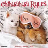 Chihuahua Rules 2019 Wall Calendar (Dog Breed Calendar)