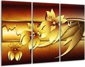 Glasschilderij Bloem | Geel, Bruin, Wit | 120x80cm 3Luik | Foto print op Glas |  F004132