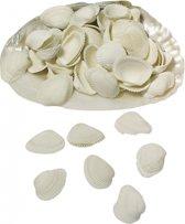 Thuis decoratie hobby schelpen in grote schelp parelmoer