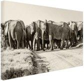 Afrikaanse Olifanten sepia  Canvas 30x20 cm - Foto print op Canvas schilderij (Wanddecoratie)
