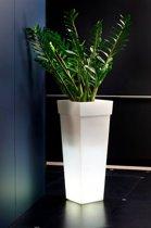 Lichtgevende Bloempot Geryon 40x40x100cm 41L COOL WHITE Nicoli