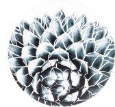 Muismat Rond Aloe Vera | Muismat Rubber | 20 x 20