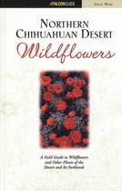 Northern Chihuahuan Desert Wildflowers