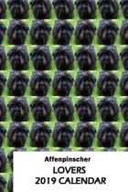 Affenpinscher Lovers 2019 Calendar