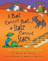 A Bat Cannot Bat A Stair Can Not Stare