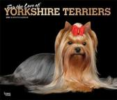 Yorkshire Terriers, for the Love of 2020 Deluxe Foil