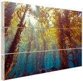 Zonlicht en planten onder water Hout 120x80 cm - Foto print op Hout (Wanddecoratie)