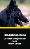 Belgian Sheepdog Calendar & Day Planner 2020 Pocket Edition