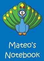 Mateo's Notebook