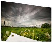 Weide voor een storm Tuinposter 120x80 cm - Tuindoek / Buitencanvas / Schilderijen voor buiten (tuin decoratie)