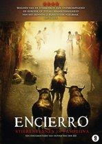 Encierro- Bull Running In Pamplona