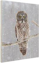 Uil in de sneeuw Hout 120x160 cm - Foto print op Hout (Wanddecoratie) XXL / Groot formaat!
