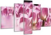 Glasschilderij Tulpen   Paars, Wit   170x100cm 5Luik   Foto print op Glas    F002923