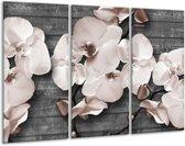 Glas schilderij Orchidee, Bloemen | Grijs | 120x80cm 3Luik | Foto print op Glas |  F007834