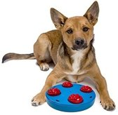 Dog Mini Treat Wheel - Puzzle