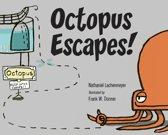 Octopus Escapes!