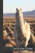 bolivian llama: small lined Cobra Snake Notebook / Travel Journal to write in (6'' x 9'') 120 pages