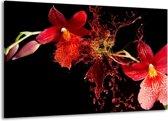 Canvas schilderij Art | Rood, Zwart | 140x90cm 1Luik