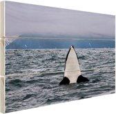 Orka boven water Hout 80x60 cm - Foto print op Hout (Wanddecoratie)
