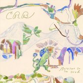 Chris -Brotherh Robinson - Barefoot In The Head