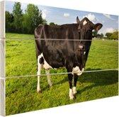 Starende zwart-witte koe Hout 160x120 cm - Foto print op Hout (Wanddecoratie) XXL / Groot formaat!