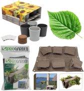 Pakket hangende tuin, plantenzak & zonnebloem