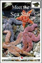Meet the Sea Star: Educational Version
