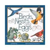BIRDS NESTS & EGGS