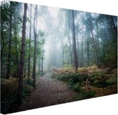 Een mistig pad door het bos Canvas 60x40 cm - Foto print op Canvas schilderij (Wanddecoratie)