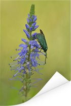 Paarse bloem van de lange ereprijs met een beest erop Poster 60x90 cm - Foto print op Poster (wanddecoratie woonkamer / slaapkamer)