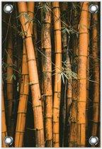 Tuinposter –Bamboe– 100x150cm Foto op Tuinposter (wanddecoratie voor buiten en binnen)