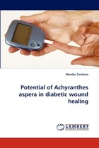 Potential of Achyranthes Aspera in Diabetic Wound Healing