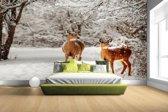 FotoCadeau.nl - Herten in de sneeuw Fotobehang 380x265