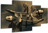 Canvas schilderij Roos | Grijs, Bruin, Wit | 160x90cm 4Luik