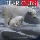 Bear Cubs Calendar 2016