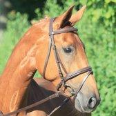 Waldhausen Star hoofdstel Lifestyle bruin