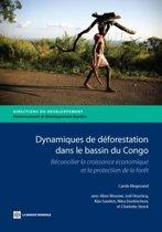Dynamiques de deforestation dans le basin du Congo