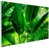 Tropische bladeren in jungle  Glas 120x80 cm - Foto print op Glas (Plexiglas wanddecoratie)