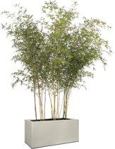 Elho Vivo Structure Finish Lang Wielen 90 - Plantenbak - Warm Grijs - Binnen & Buiten  - L 39 x W 88 x H 41 cm
