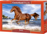 Horse on the Beach puzzel 500 stukjes