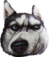 Kare Kussen Hond Gezicht Groot