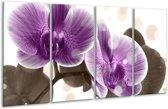 Glasschilderij Orchidee   Paars, Wit   160x80cm 4Luik   Foto print op Glas    F005079