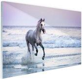 Paard op het strand Glas 60x40 cm - Foto print op Glas (Plexiglas wanddecoratie)