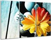 Canvas schilderij Bloem | Geel, Oranje, Blauw | 120x80cm 3Luik