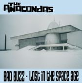 Bad Buzz- Lost In The Space Age