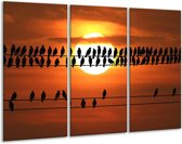 Canvas schilderij Vogels | Zwart, Geel, Oranje | 120x80cm 3Luik