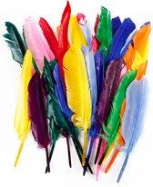 Veren, l: 17-20 cm, kleuren assorti, eend, 250 assorti