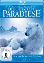 Arktis - Auf Den Spuren Der Eisbare